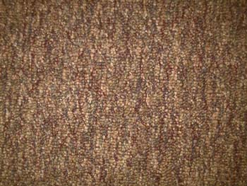 In Stock Carpet Sample - FRUITWOOD - Click To Enlarge